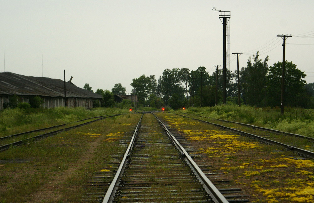 Тупик, станция Друя.