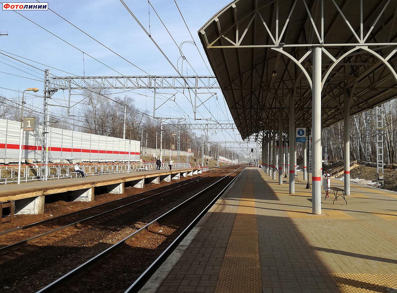 шлюхи московская область станция салтыковская день новые